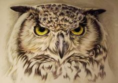 Golden Eagle Color pencil drawing Done this one about two years ago. Quick update - today i almost finished the new large drawing got just a few more tweeks on it. Will share it with you on m...