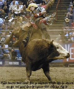 Live, Love, Breath Rodeo Rodeo Cowboys, Real Cowboys, Cow Cat, Cowboys And Angels, Rodeo Time, Bucking Bulls, Horse Anatomy, Bull Riders, Horses And Dogs