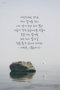 #437 사랑한다는 것으로 새의 날개를 꺾어.. 사진 Wise Quotes, Famous Quotes, Words Quotes, Inspirational Quotes, Sayings, Butterflies In My Stomach, Korean Writing, Korean Quotes, Korean Words