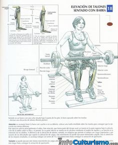 seated cable row aka pulley row is a great back exercise