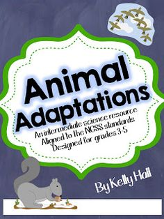 """My fifth graders had a great week with two animal adaptation labs. The first one we did was """"Blubber Gloves."""" I thought this was a lesson. Animal Fact File, Animal Facts, Science Resources, Science Ideas, Lifecycle Of A Frog, Intermediate Grades, Table Of Contents Page, Animal Adaptations, Butterfly Life Cycle"""