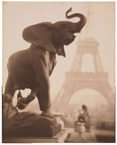 Pierre Dubreuil (photographer), French, Eléphantaisie, 1908 Gelatin silver print 247 x 195 mm x 7 in.) Museum purchase, Prints and Drawings Art Trust Fund Untitled Film Stills, Elephants Never Forget, Art Criticism, Legion Of Honour, Ville France, Elephant Love, Elephant Walk, Gelatin Silver Print, Paris City