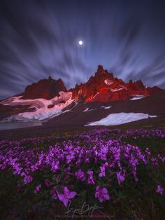 The Torch by Ryan Dyar on 500px