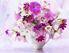 Красота..Цветы. Обсуждение на LiveInternet - Российский Сервис Онлайн-Дневников