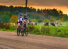 Visit RideOxford.ca to plan your next ride in Oxford County.  View our routes, download the map, route sheets, links for elevation information, and tips on where to start your ride. Back Road, Beautiful Architecture, Ontario, Tourism, Cycling, Oxford, Bicycle, Canada, Map