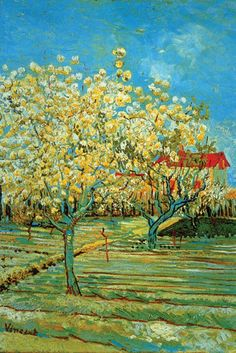 Orchard with Cypress, by Vincent van Gogh