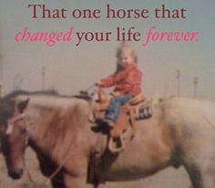 That one horse that changed your life forever....