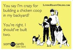"""You say I'm crazy for building a chicken cook in my backyard?  You're right.  I should've built two."""