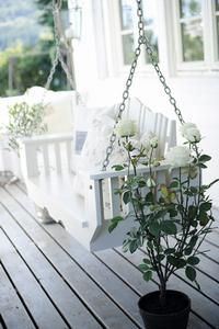 relax in the swing