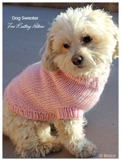 Knitted Dog Sweater Pattern, Dog Coat Pattern, Knit Dog Sweater, Small Dog Coats, Small Dog Sweaters, Cat Sweaters, Knitting Patterns For Dogs, Free Knitting, Patterns For Dog Clothes