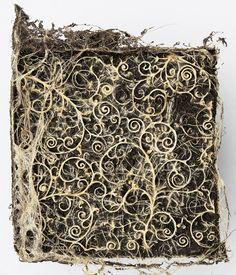 Diana Scherer, artist domesticates plant roots to form textiles. Collages, Root System, Photoshop, Plant Design, Cool Plants, Land Art, Oeuvre D'art, Landscape Art, Les Oeuvres