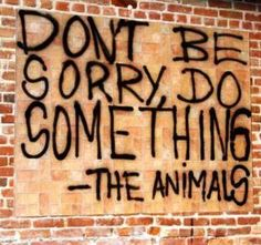 Don't be sorry, do something.