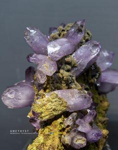 紫水晶 墨西哥发现 美国阿肯斯通矿晶公司藏 Amethyst/Mexico/The ArkenstonemLtd Jade Stone, Meat, Food, Essen, Meals, Yemek, Eten