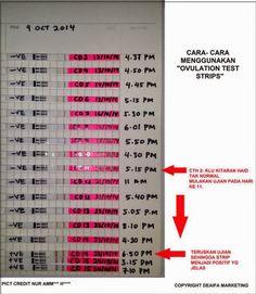 Positive OPK Progression. Ovulation Test. TTC PCOS