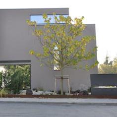 Frontfassade: moderne Häuser von Neugebauer Architekten BDA