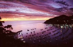 My favorite part of LA, Catalina Island