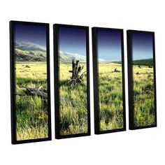 """ArtWall Fall Creeps by Mark Ross 4 Piece Framed Photographic Print Set Size: 36"""" H x 48"""" W x 2"""" D"""