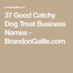 Catchy Dog Treat Names