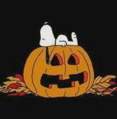 Snoopy - Halloween