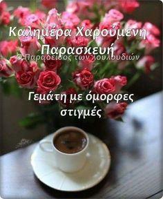 Good Night, Good Morning, Beautiful Pink Roses, Mornings, Google, Hair, Beauty, Messages, Fotografia