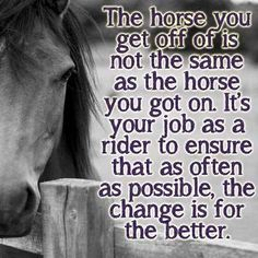The horse you get off of is not the same as the horse you got on. It's your job as a rider to ensure that as often as possible, the change is for the better. Equine Quotes, Equestrian Quotes, Inspirational Horse Quotes, Horse Riding Tips, Riding Quotes, Horse Pictures, Animal Quotes, Horse Care, Beautiful Horses