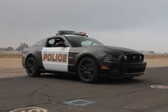 5-0! 2014 Ford Mustang GT Police Car on World's Fastest Car Show