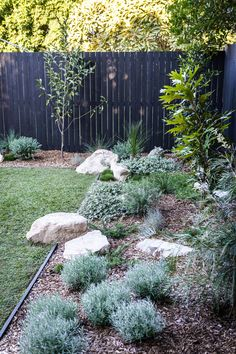 My Backyard Makeover — Adore Home Magazine Australian Garden Design, Australian Native Garden, Backyard Plants, Backyard Landscaping, Landscaping Design, Back Gardens, Outdoor Gardens, Small Front Gardens, Outdoor Rooms
