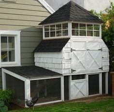 chicken coop homesteading