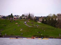 Gasworks Park. Seattle. By Melissa Fletcher.