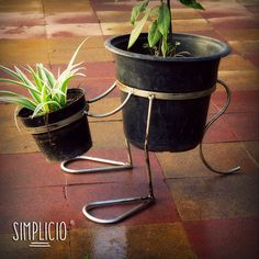 Simplicio - Portamaceta Cangooro