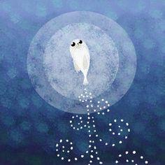 Cute Animal Drawings, Art Drawings, The Secret Of Kells, Song Of The Sea, Age Of Aquarius, Disney Songs, Celtic Art, Animal Wallpaper, Illustrator Tutorials