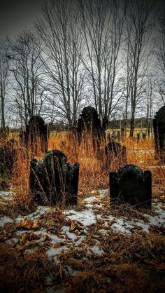 """""""When he digs a hole no flower's getting planted as the shovel digs down six feet deep"""" -from the poem The Gravedigger's Garden https://www.wattpad.com/422944798-chapter-1-of-the-macabre-masterpiece-repressed"""