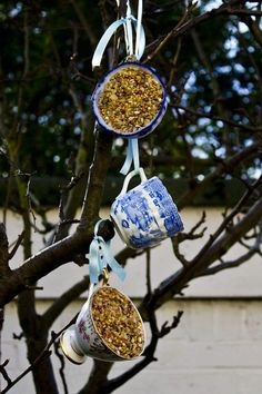 Bird feeder from tea cups