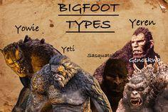 Bigfoot types