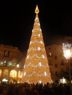 Christmas In Italy Decorations.150 Best Christmas In Italy Images Christmas In Italy