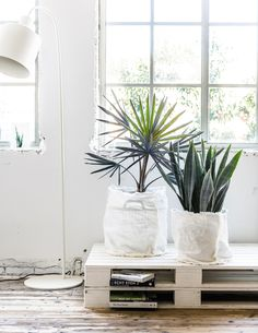 DIY plantenzak | DIY planter  | vtwonen 09-2016 | photography: Sjoerd Eickmans | styling: Moniek Visser