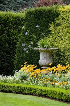 41 Incredible Garden Hedge Ideas for Your Yard (PHOTOS) Layering different sizes and shapes of hedges attracts visual interest. The small hedge not only keeps the flowers in check, it also forms a clean line with the lawn making up keep easier. Beautiful Flowers, Beautiful Gardens, Garden Hedges, Garden Urns, Gorgeous Gardens, Outdoor Gardens, Beautiful Flowers Garden, Garden Design, Garden Landscaping