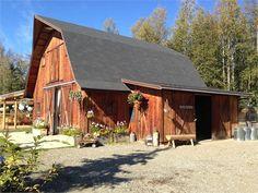 Roskelley & Buhrman's Wedding Ceremony - Gloryview Farm - Wasilla, Alaska