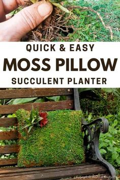 Take your garden decor to a whole new level with this beautiful succulent moss pillow planter. Not only is it easy to make but it also adds a magical touch to any outdoor space #gardendecor #mosspillow #acraftymix #succulentplanter #gardendecorideas