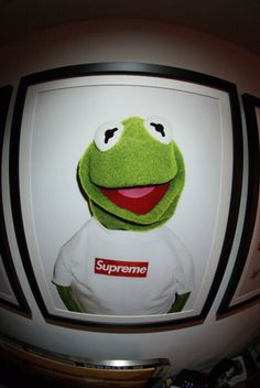 Kermit The Frog Supreme Wallpaper Stussy Wallpaper Kermit The Frog Tumblr Wallpaper