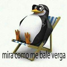 Funny Spanish Memes, Spanish Humor, Best Memes, Dankest Memes, Memes Lindos, Funny Reaction Pictures, Arte Horror, Cartoon Memes, Offensive Memes