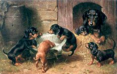 """""""Dachshund Family in a Stable,"""" five pups: four black, one brown! -- by Carl Reichert (1836 -- 1918, Austrian)"""