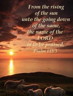Biblical Quotes, Bible Verses Quotes, Bible Scriptures, Spiritual Quotes, Praise The Lords, Praise And Worship, Praise God Quotes, Worship God, Images Bible