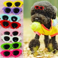 cool Pet Dog Bow Hair Clips Puppy Grooming Hairpin Boutique Sunglasses Accessories