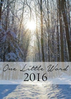 Instead of a bunch of resolutions to start out my year I choose one word to focus my year around.  It helps keep me on track and makes me feel as though I'm actually getting something done.  Wonder what my word is for this year?  Click on over to see!