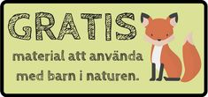 Gratismaterial om djur och natur.   Lanclin