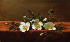 MARTIN JOHNSON HEADE Cherokee Roses c. 1890