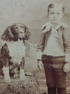 Antique Cabinet card photo Spaniel Dog and boy by PUGHALLVINTAGE on Etsy