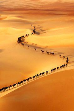 Atravessando o deserto! Sozinho você morre!