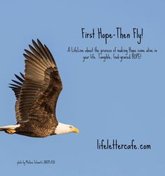 """Right now at LifeLetter Cafe ... """"My good, good Father has never let me down .. @Hopeful50      Read & refresh-forward Susan and """"First Hope – Then Fly!"""" here .."""